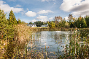 Vue sur l'étang Domaine de la Sobriéte